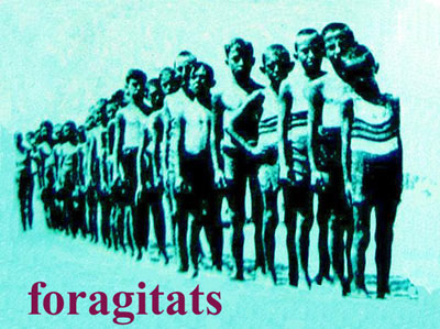 foragitats-4.jpg