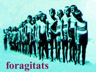 foragitats-4.jpg